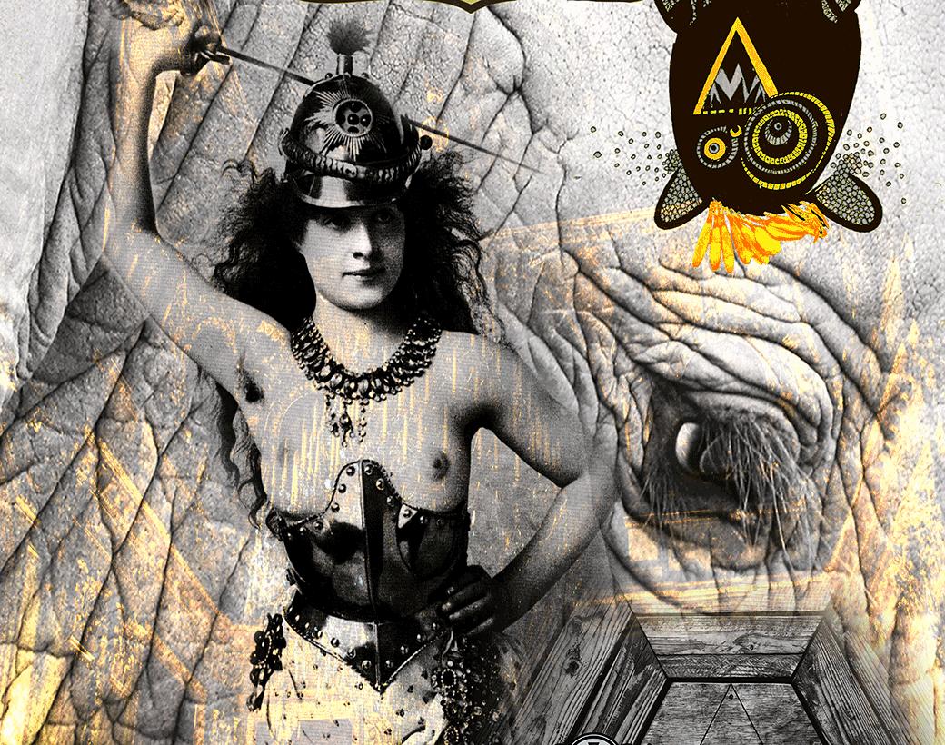 6_koenigshaeuser_cover_2_gallery