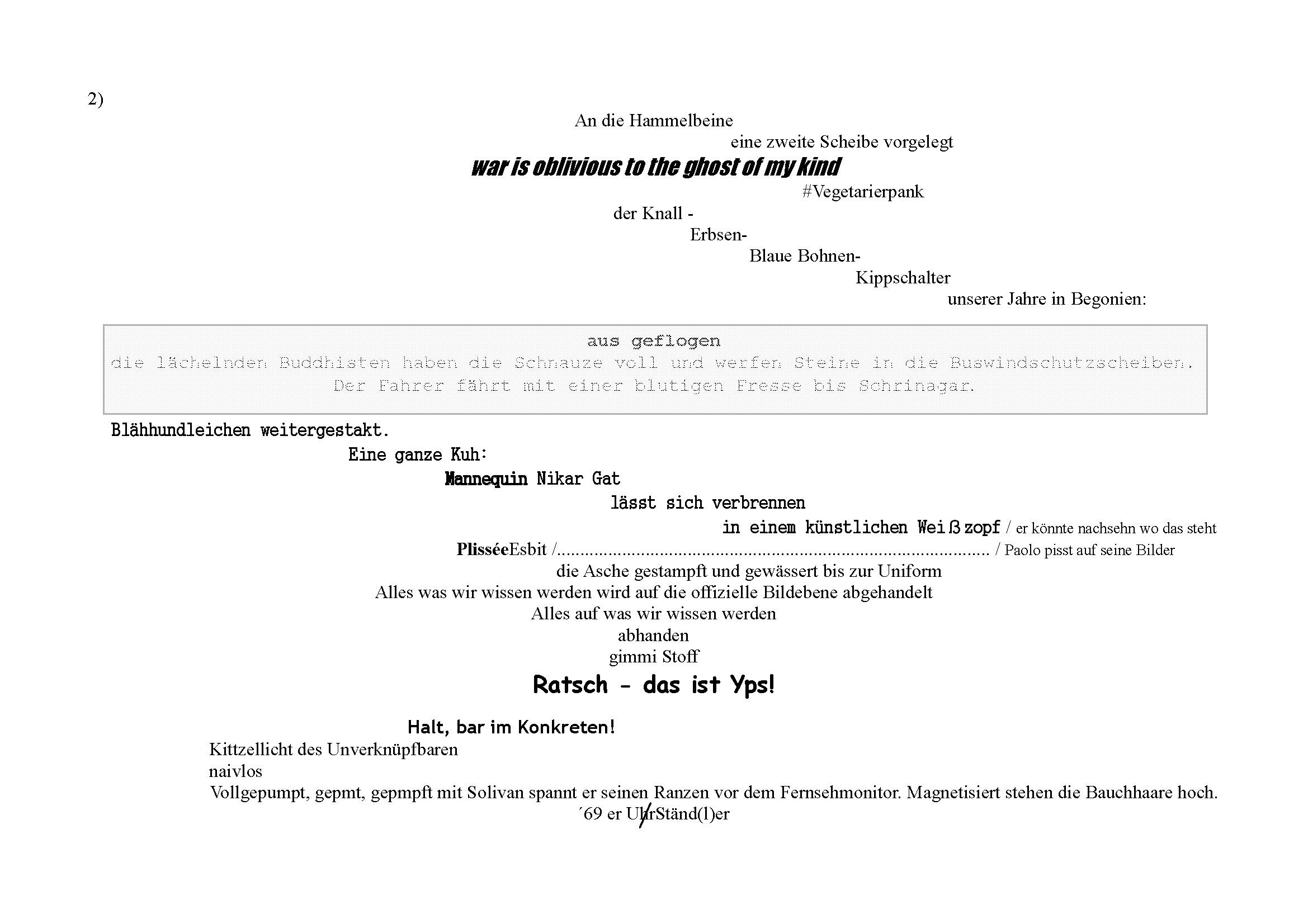 Fallraus für stock 11 QUER scOHre poem2_Seite_3
